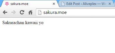sakura moe complete